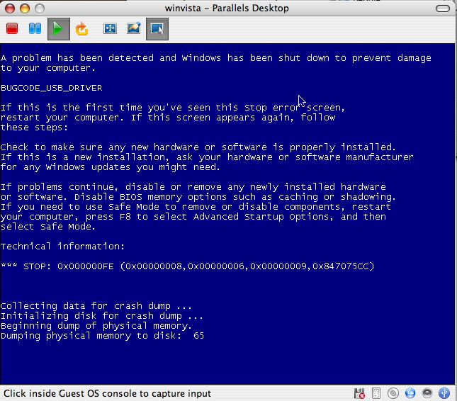 Bittorrent Blue Screen