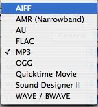 Sound Grinder audio convert options