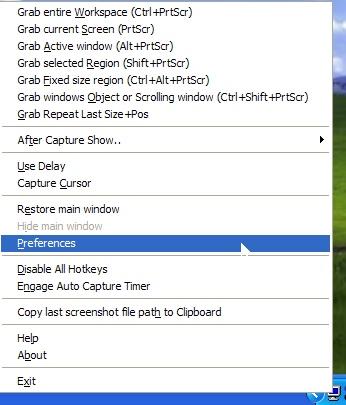 screen captor menu