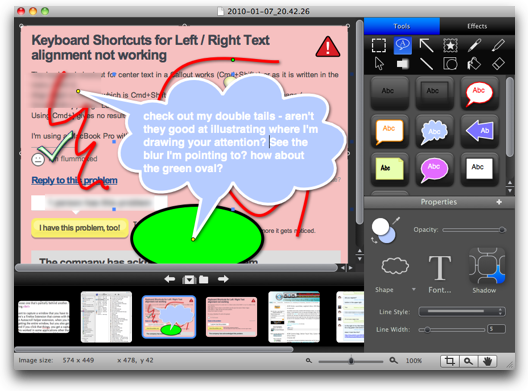 snagit image annotated a lot