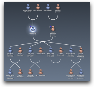 normal org chart kind of view