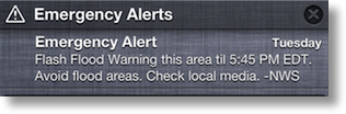 emergency alert as described in text