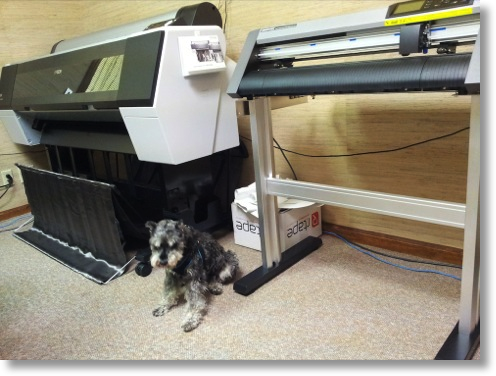 george's two printers with his schnauzer supervising
