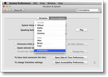 system prefs, dictation, customize
