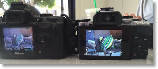 2 cameras showing images zoomed to 300mm. E-M10 is bigger by a bit